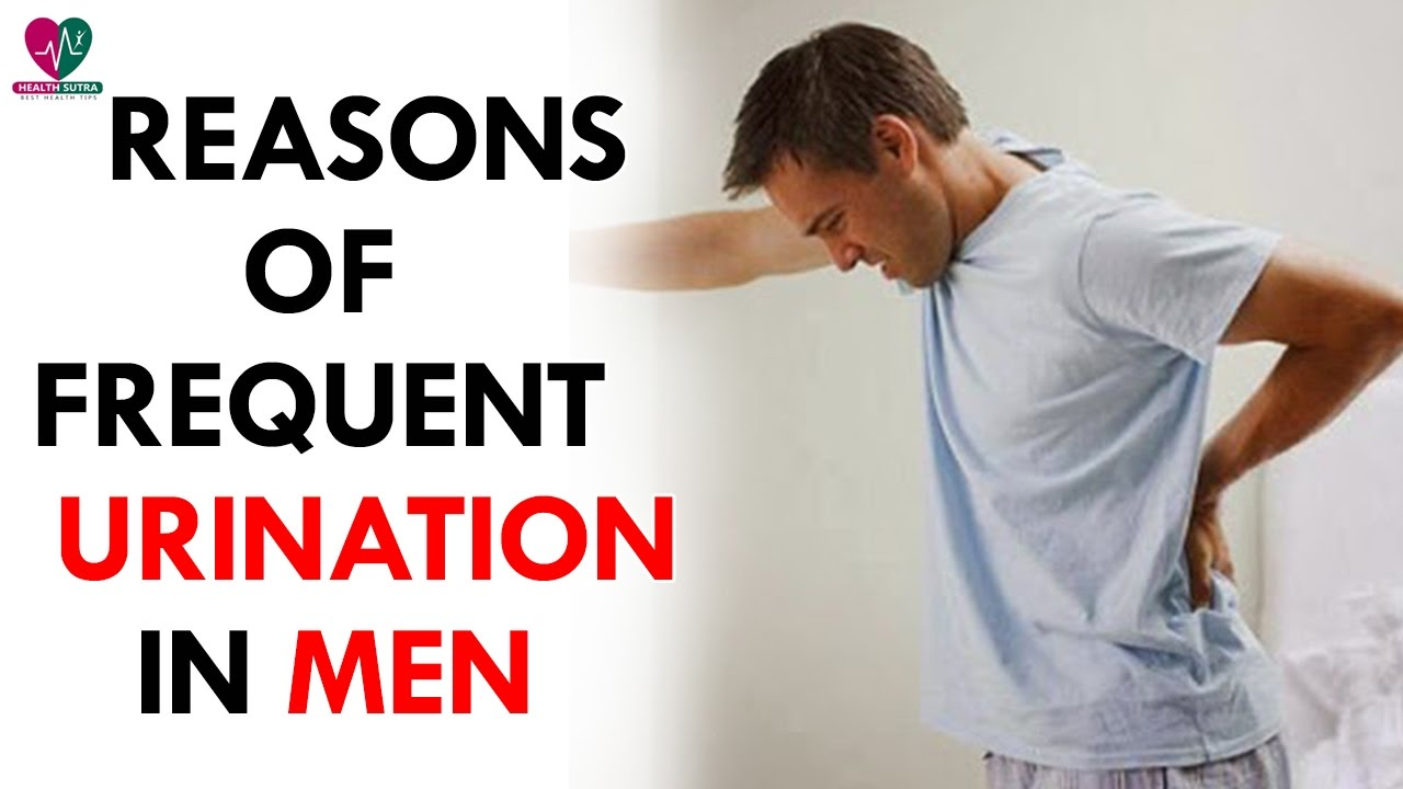reasons of frequent urination in men - health sutra - youtube, Skeleton