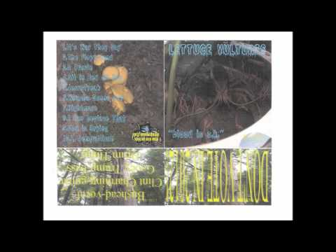 """The Lettuce Vultures - """"Blood is O.K."""" [full album]"""