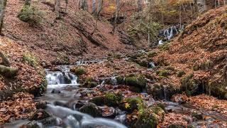 Autumn Nature of Turkey 4K