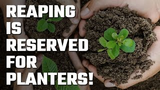 🌱 Reaping is Reserved for Planters!
