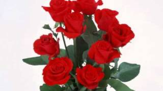 Roses from the South- Johann Strauss