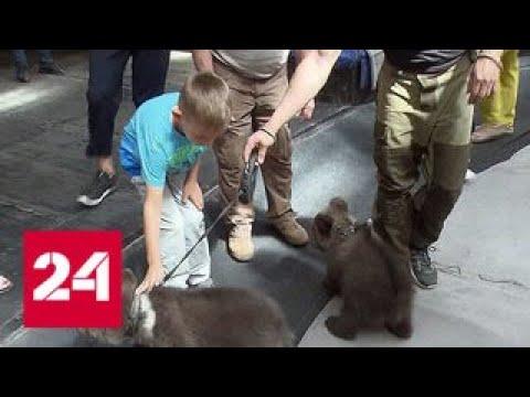 Семилетнему ребенку из Тамбовской области помогли исполнить мечту - Россия 24