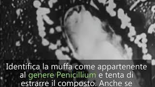 Storie di medici: Alexander Fleming