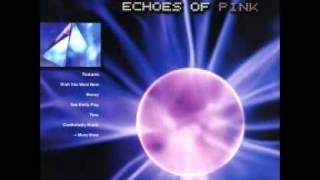 Leslie King - Money (Pink Floyd Cover)