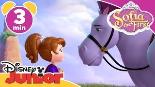 Sofia The First | Best Unicorn Friends 🦄- Magical Moment | Disney Junior UK