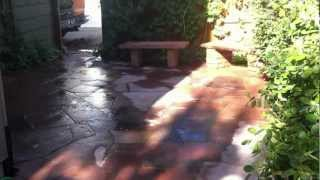 Installing A Flagstone Patio And Strip Stone Planters