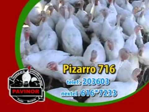 Pavinor pavinor publicidad - youtube