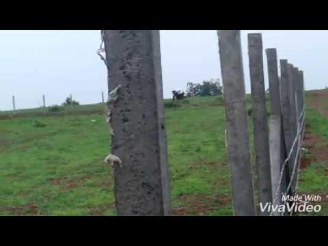 Land fencing zahirabad.