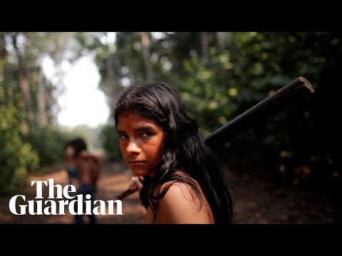 Amazon fires: the tribes fighting to save their dying rainforest