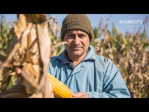 Modernizing Family Farming In Paraguay