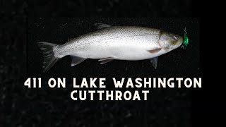 Lake Washington Cutthroat Trout
