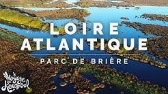 LOIRE-ATLANTIQUE - Parc de Brière | Fragments [4K]