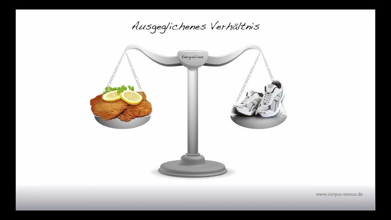 kalorien berechnen abnehmen
