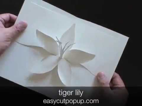 Crafts tiger lily kirigami pop up card youtube crafts tiger lily kirigami pop up card mightylinksfo
