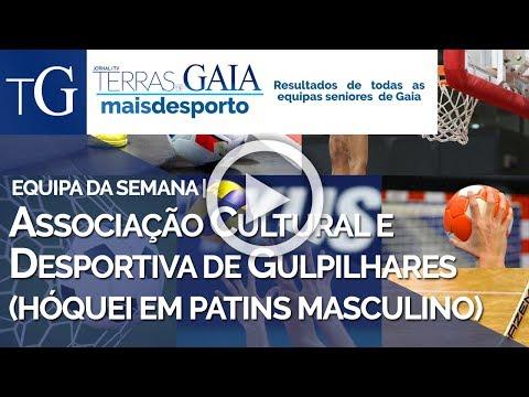 Associação Cultural e Desportiva de Gulpilhares (Hóquei em Patins masculino)