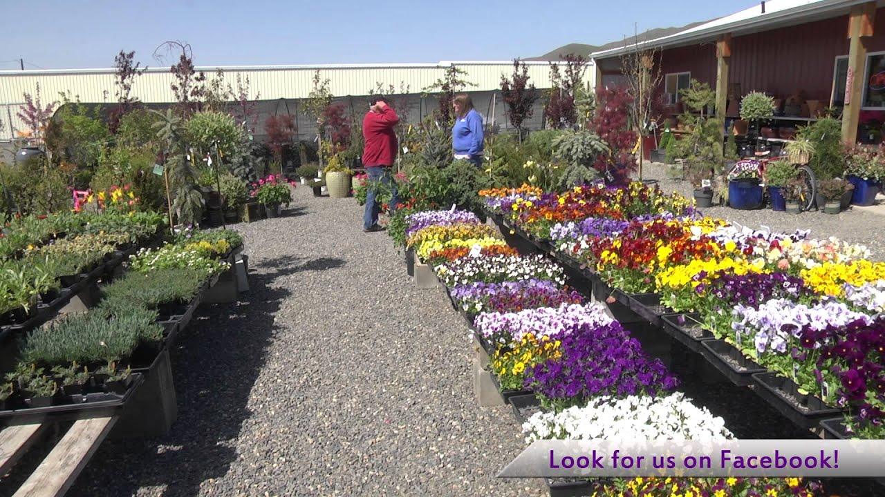 Pattu0027s Garden Center