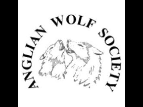 Anglian Wolf Society Observational Visit with Feeding.