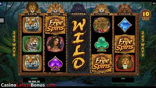 Exotic cats from Microgaming (FREESPINS, BONUSES, MEGAWIN, BIGWIN, SUPERBIGWIN)