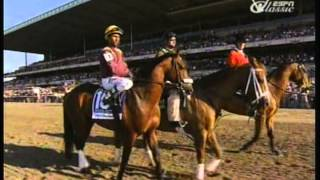 2009 Belmont Stakes - Summer Bird