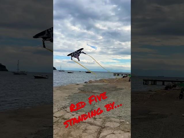 X-wing kite #shorts #xwing #starwars