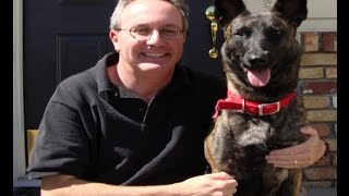 Free Video Reveals Three Keys To Successful Dog Behavior Modification