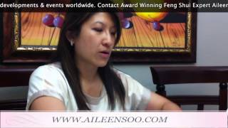 Feng Shui Master Aileen Soo - Works With Architect On Building Plans