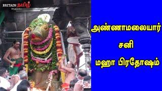 அண்ணாமலையார் சனி மஹா பிரதோஷம்  | Thiruvannamalai | Sani Pradosam | Sani Maha Pradosam |Britain Tamil