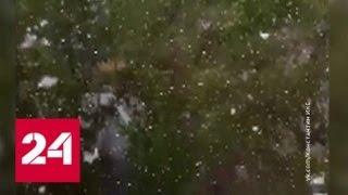 В Иркутске выпал снег - Россия 24