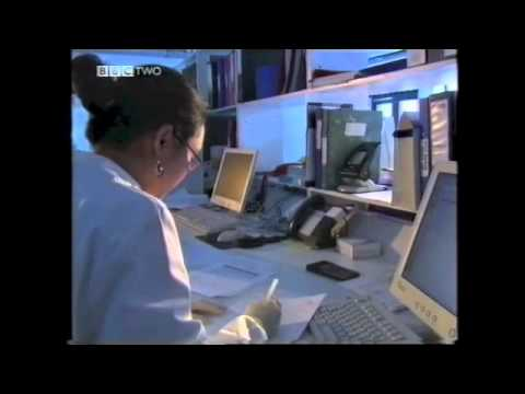 BBC iScience Human Genome