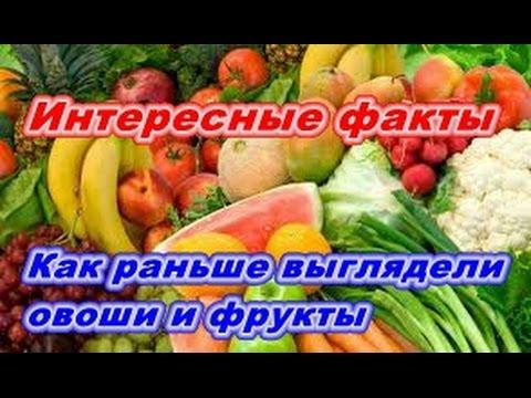 Как раньше выглядели современные овощи и фрукты. #Интересные факты