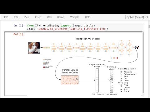 TensorFlow Tutorial #08 Transfer Learning - YouTube