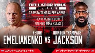 Федор Емельяненко победил нокаутом в главном бою турнира Bellator 237
