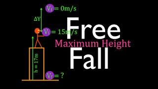 Physics, Kinematics, Free Fąll (12 of 12) Maximum Height