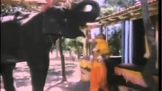 к.ф Верный Друг-1989 г-Храм
