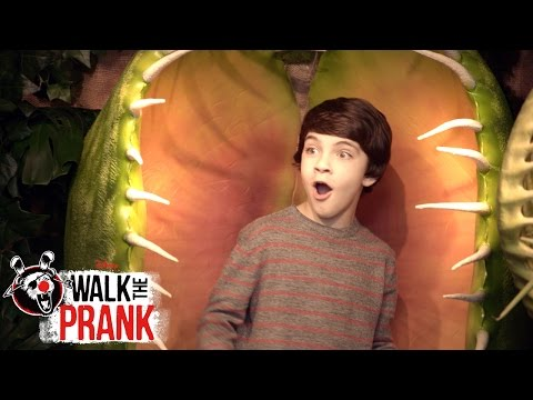 Plant   Walk the Prank   Disney XD