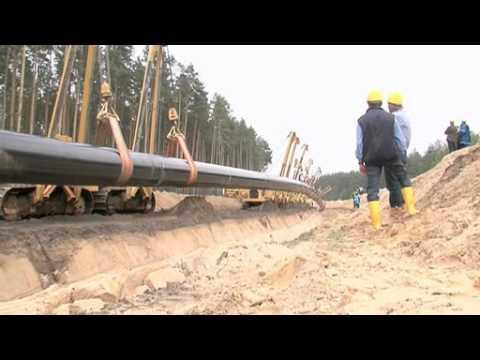 OPAL Pipeline: Teamgeist
