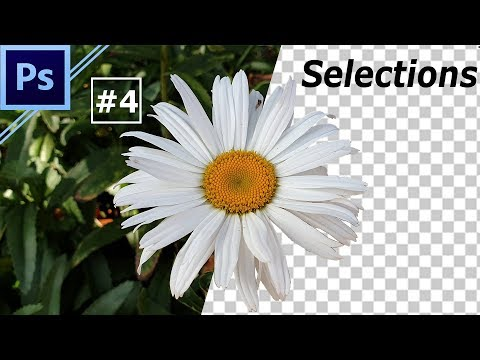 Photoshop Basic Training Class #4 | Magic Wand & Quick Selection | Help In Tamil