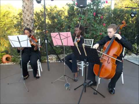 Palm Beach, Fort Lauderdale, and Miami Wedding Musicians