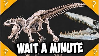 I-REX Skeleton NOT In Mosasaurus Stomach