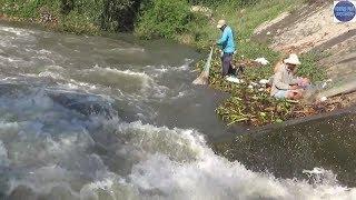 Hành trình về An Giang xem xả lũ/ flood