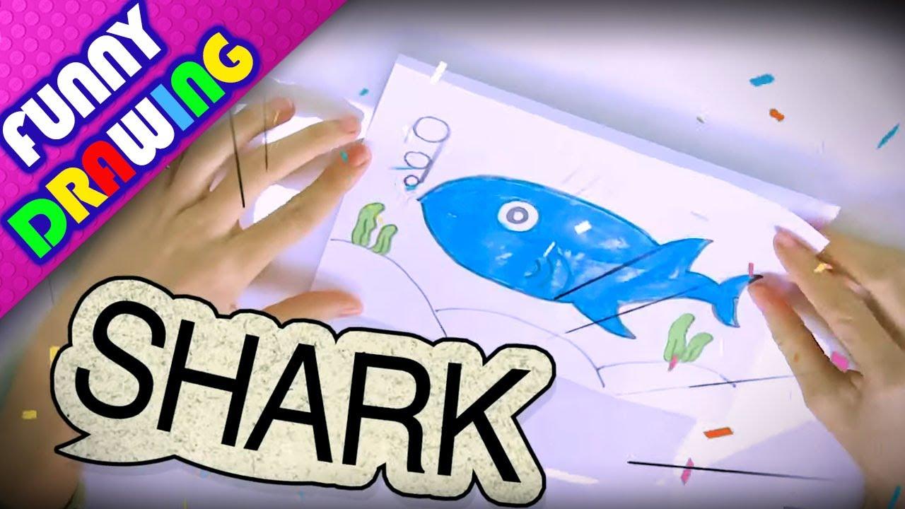DIY - How to draw Shark and Seal easy - Dạy bé vẽ và tô màu