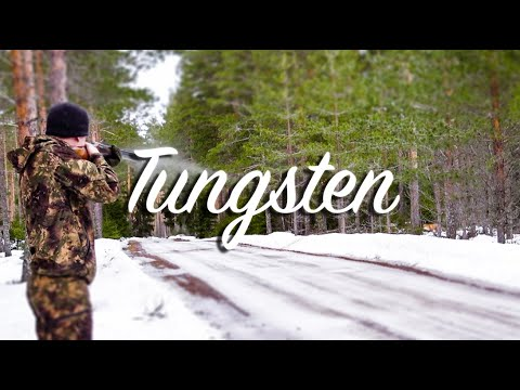 NH: Fox Hunting With Tungsten (Action Highlights)
