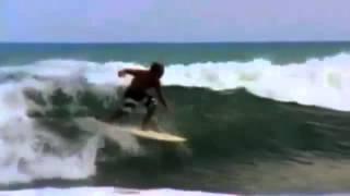 inesperado Tubarão salta entre dois surfistas