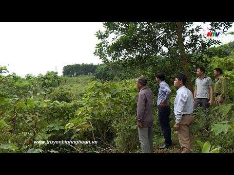 Hộp thư truyền hình: Vì sao dân được giao đất sản xuất nhưng chưa được cấp giấy chứng nhận QSĐ?