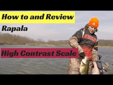 Rapala High Contrast 50 Lb  Scale Review And How To Use It