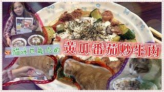 魚乾喵廚房 - 貓咪也能吃的  黃瓜番茄炒牛肉