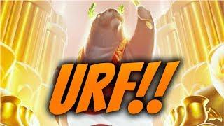 Quinn na URFie :3