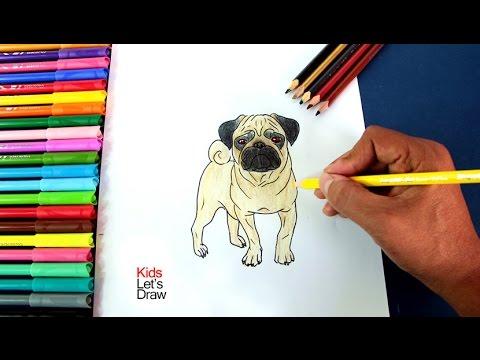 Dibujando un Perro Pug Carlino paso a paso  Drawing a Pug Dog