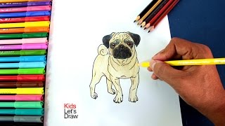 Dibujando un Perro Pug (Carlino) paso a paso | Drawing a Pug Dog Breed
