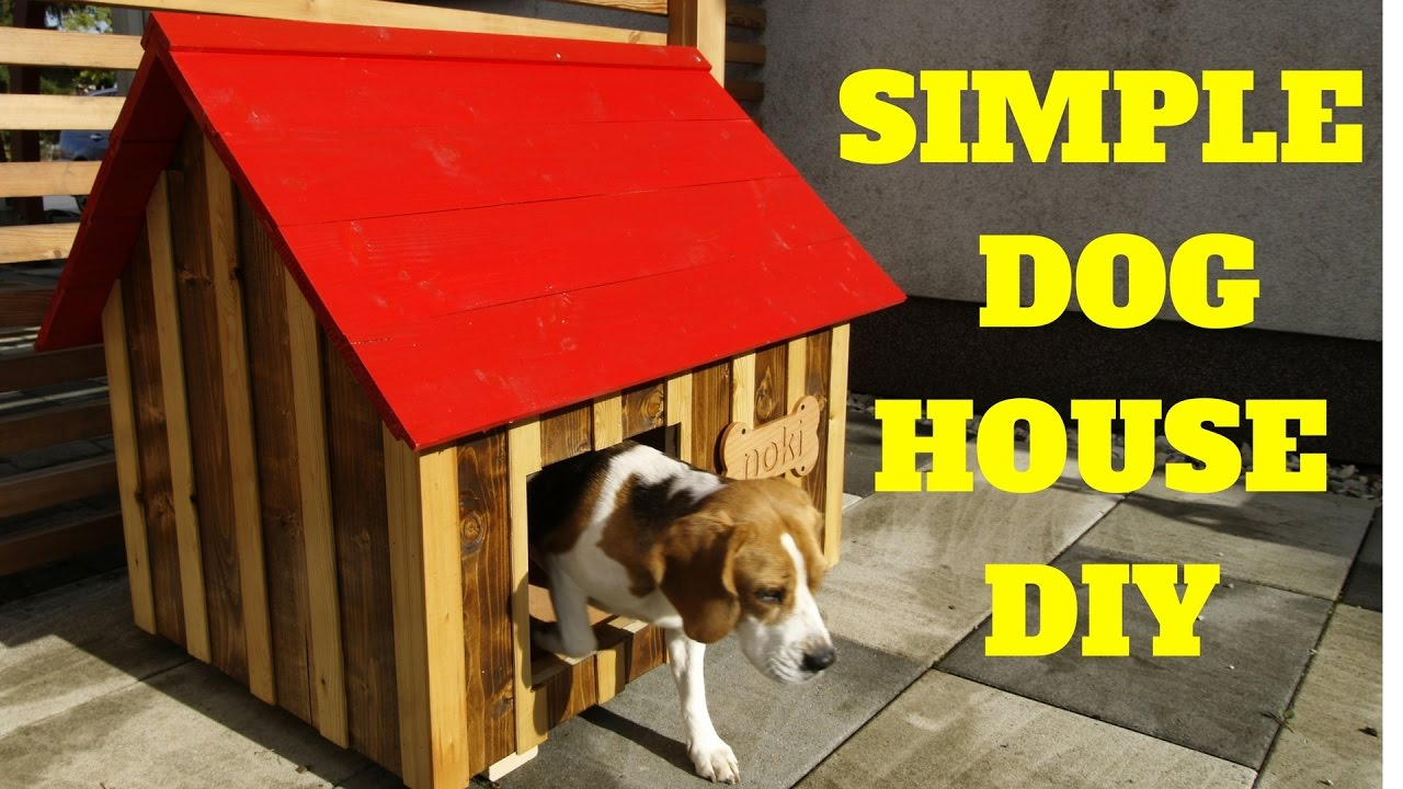 Simple Amp Fast Dog House Build Youtube